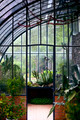 Greenhouse - PhotoDune Item for Sale