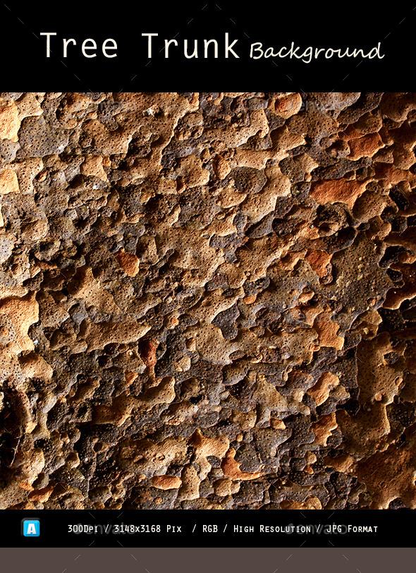 Tree Trunk Texture 0108 - Wood Textures