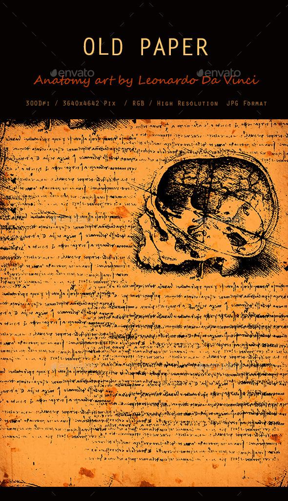 Old Anatomy Art Texture 0111 - Art Textures
