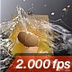 Egg Gets Destroyed By A Mousetrap - VideoHive Item for Sale