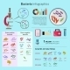 Bacteria Infographic Set - GraphicRiver Item for Sale