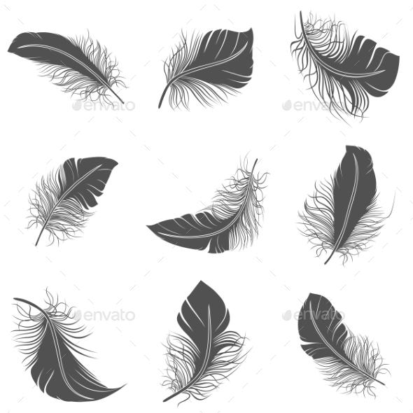 Feather Black Set - Miscellaneous Vectors