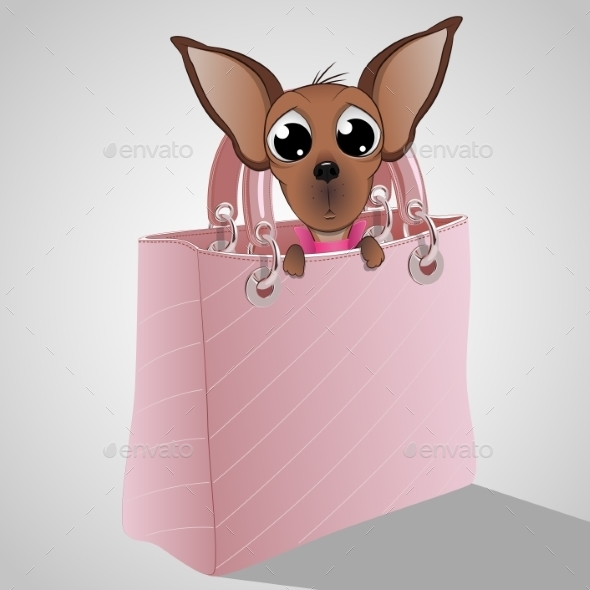 Dog in a Handbag - Retail Commercial / Shopping