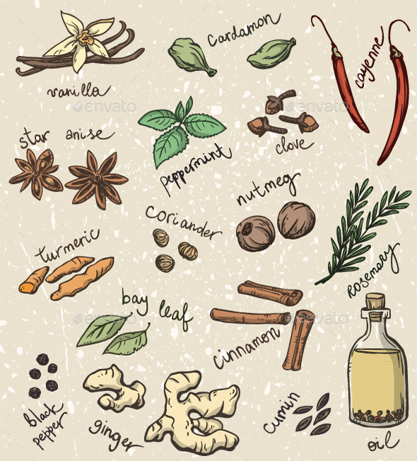Set of Spices and Herbs - Food Objects