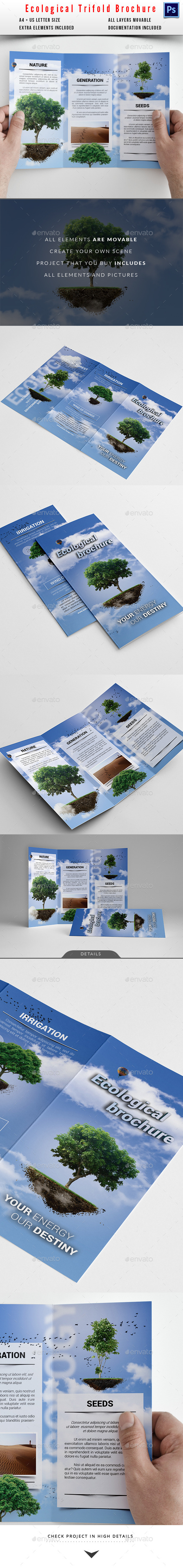 Eco / Cloud Trifold Brochure - Informational Brochures