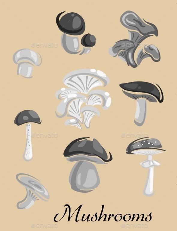 Mushrooms  - Food Objects