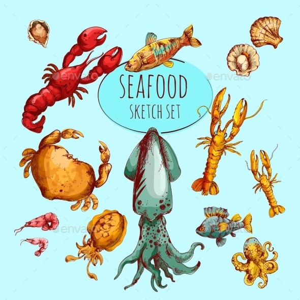 Seafood Sketch Colored - Animals Characters
