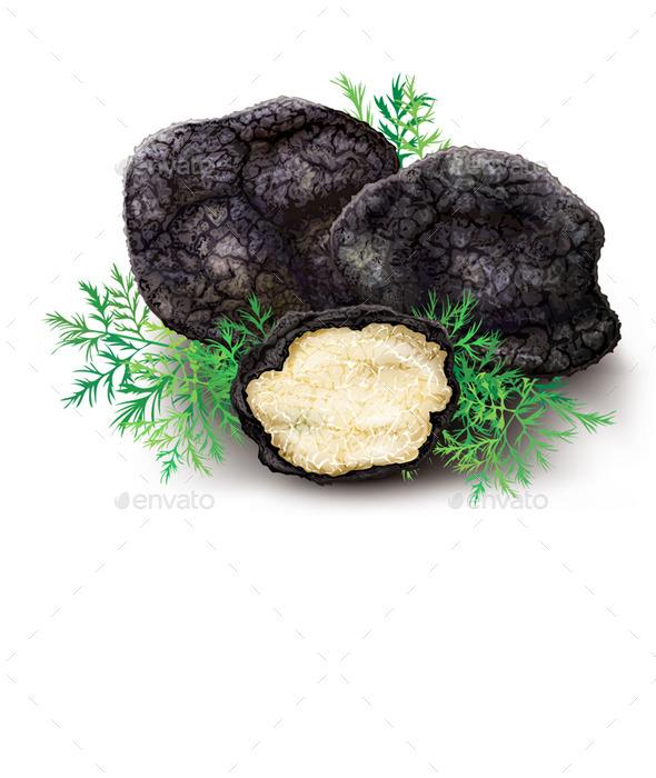 Mushroom Black Truffle - Organic Objects Objects