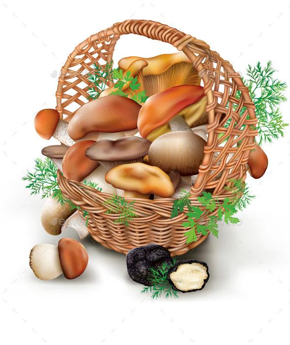 Mushrooms in a Wicker Basket - Organic Objects Objects