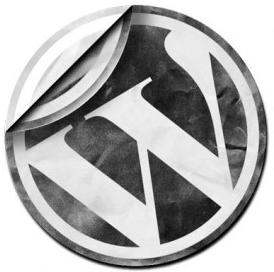 30 Best Wordpress Themes
