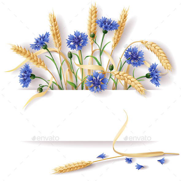 Wheat Ears and Cornflowers - Flowers & Plants Nature