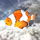 Animated Clownfish - 3DOcean Item for Sale