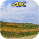 Clouds Over The Vineyard - VideoHive Item for Sale