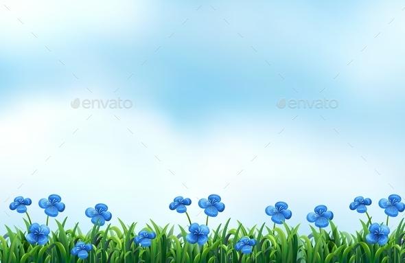 Nature - Flowers & Plants Nature