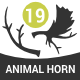 Animal Horns - GraphicRiver Item for Sale