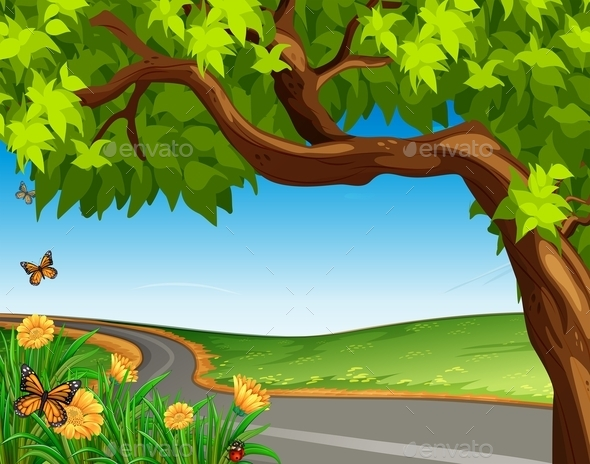 Giant Tree at the Road - Flowers & Plants Nature