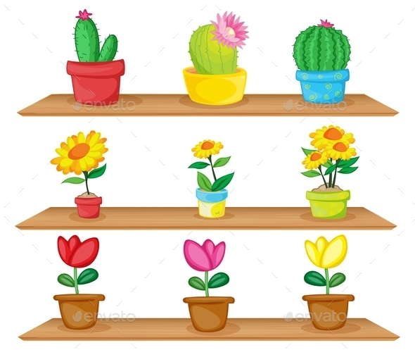 Wooden Shelves with Ornamental Plants - Flowers & Plants Nature