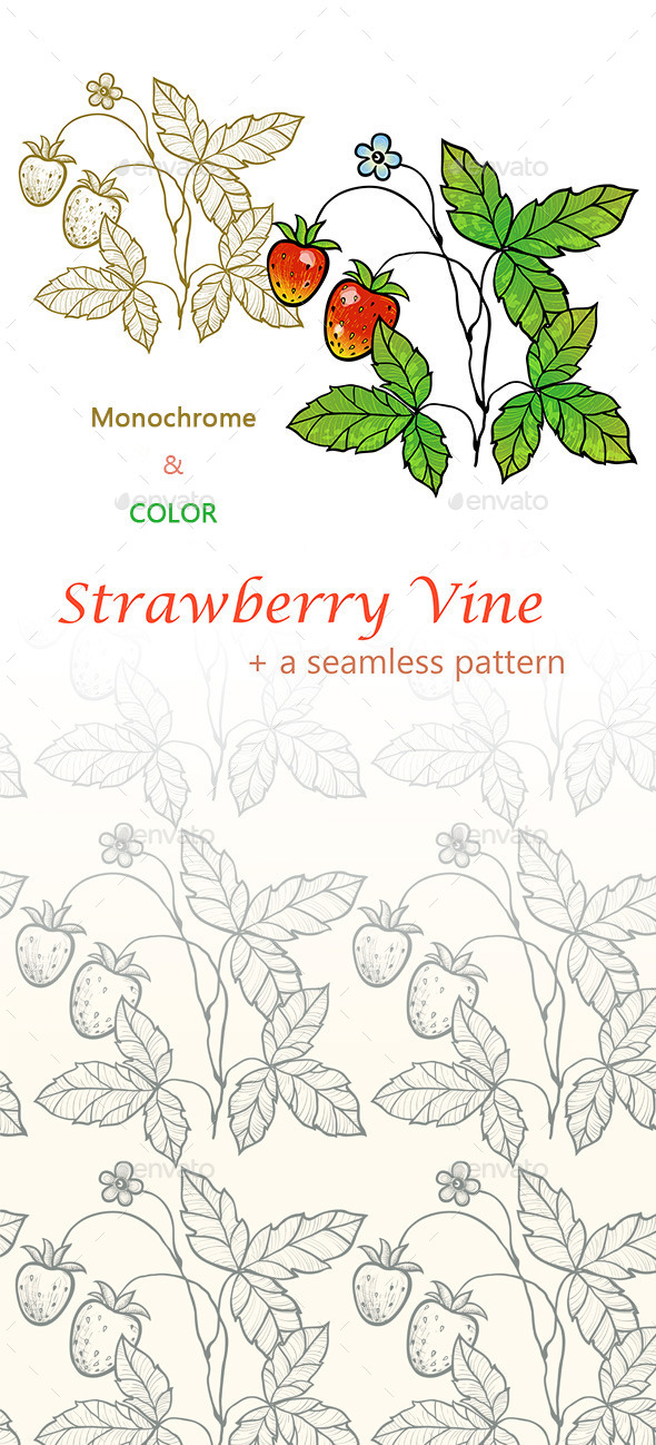 Strawberry Vine with Berries - Patterns Decorative