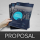 Project & Business Proposal v3 - GraphicRiver Item for Sale
