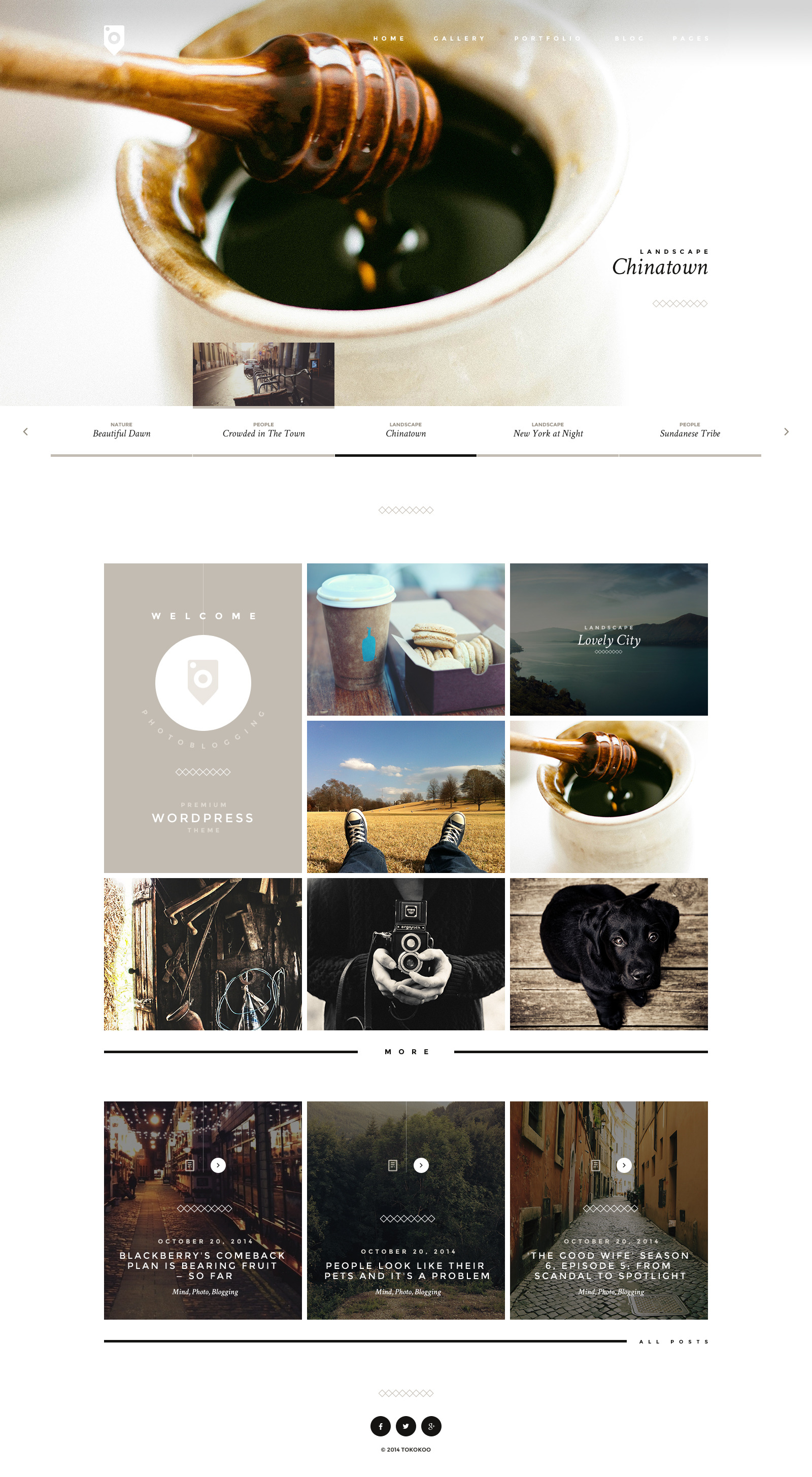 photoblog photography portfolio and blog theme by tokokoo