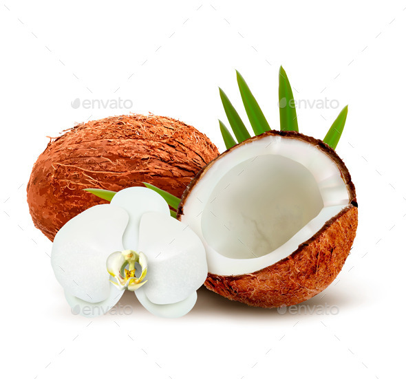 Coconut with Leaves and White Flower - Food Objects