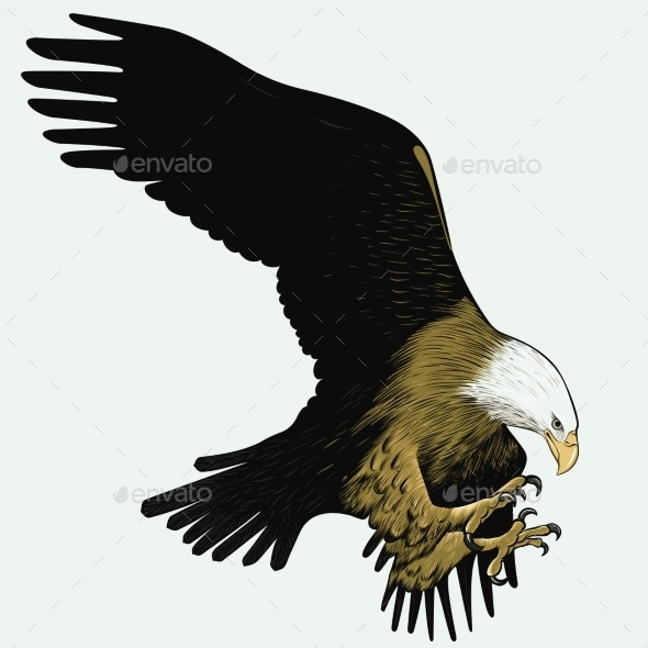 Bald Eagle - Animals Characters