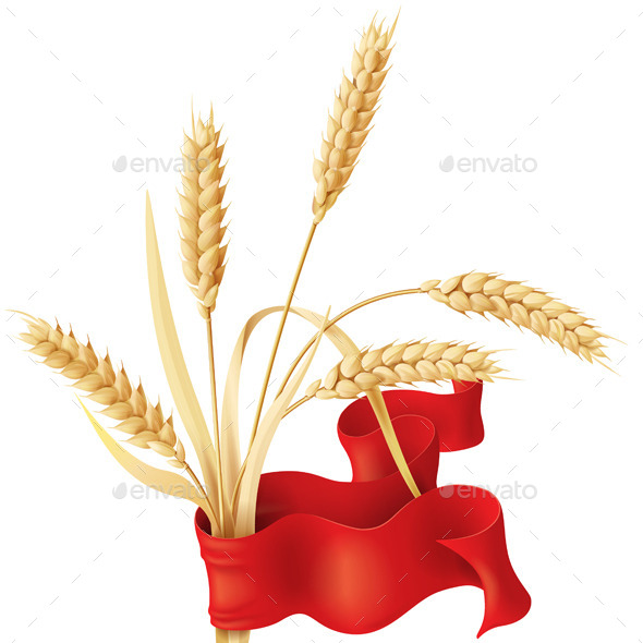 Wheat Ears with Ribbon - Organic Objects Objects