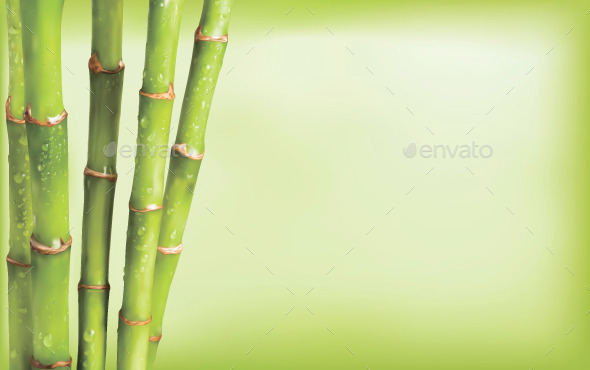 Bamboo Background - Backgrounds Decorative
