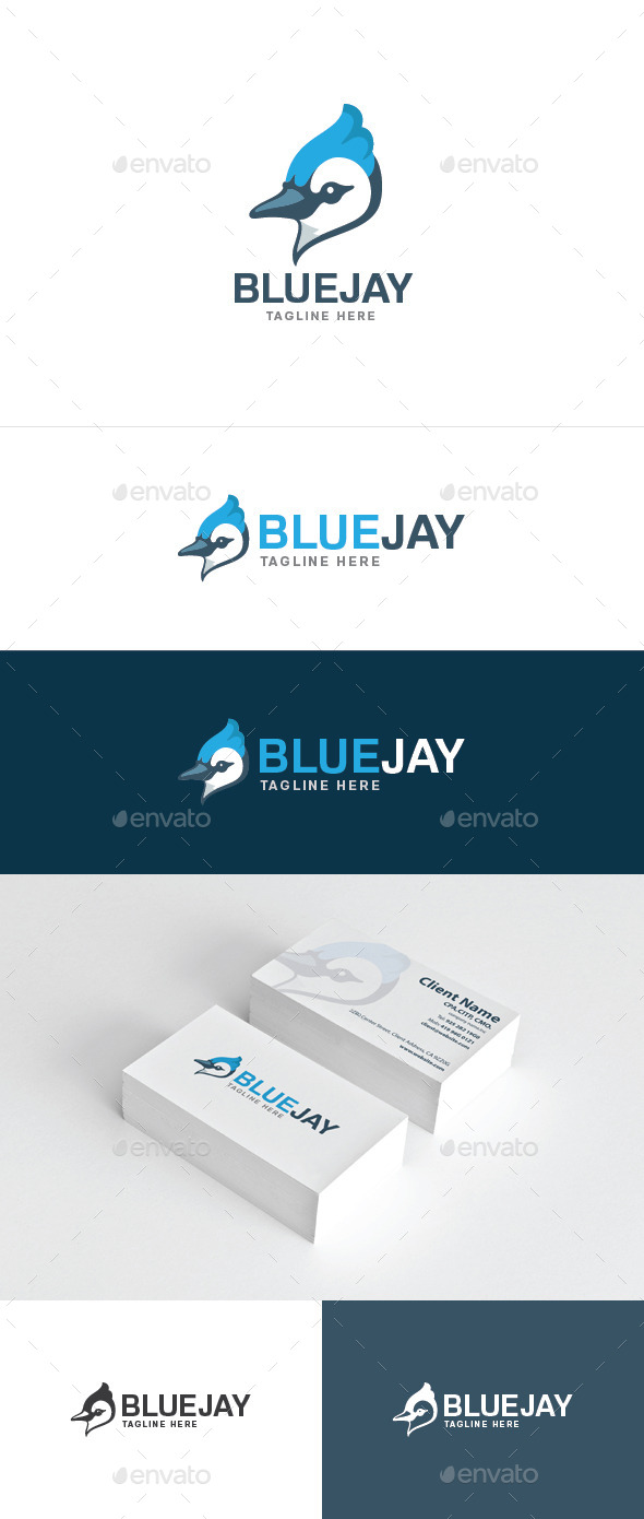 Blue Jay - Animals Logo Templates