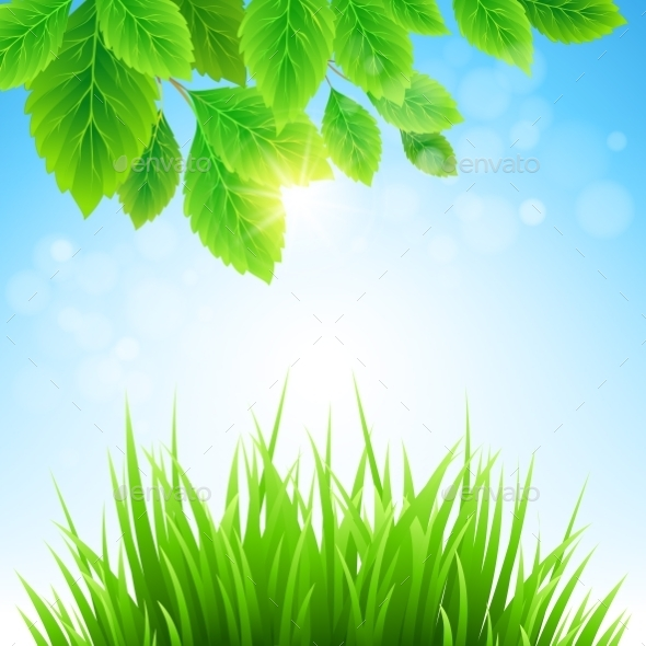 Spring Background  - Nature Conceptual
