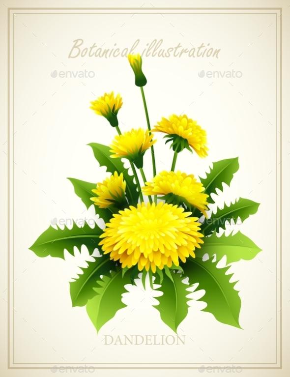 Flower Illustration  - Flowers & Plants Nature
