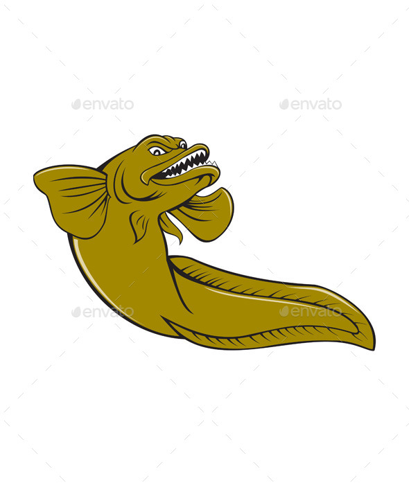 Eelpout Fish Cartoon  - Animals Characters