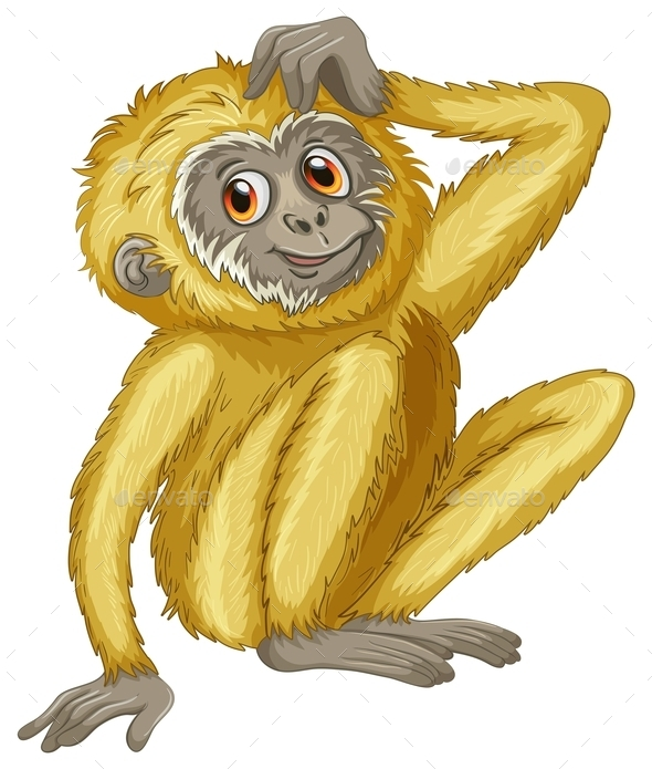 Gibbon - Animals Characters