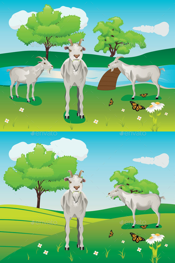 Goats and Green Lawn - Animals Characters