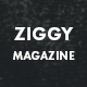 Ziggy - Professional Blog/Magazine WordPress Theme Nulled