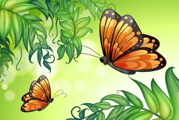 Butterflies Background - Animals Characters