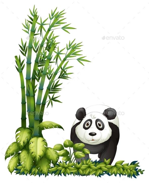 A Panda - Animals Characters