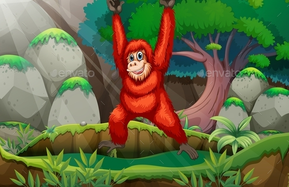 Orangutan in Forest - People Characters