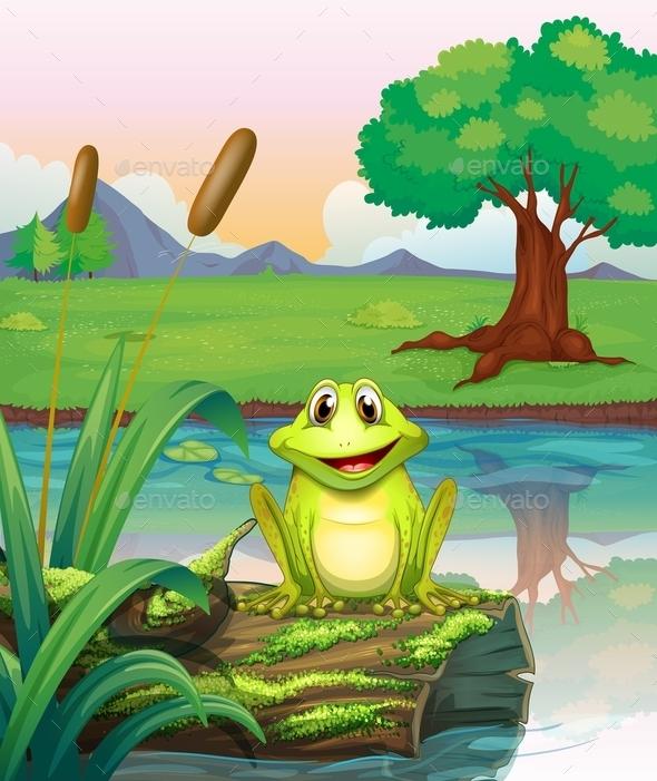 Frog at Lake  - Animals Characters