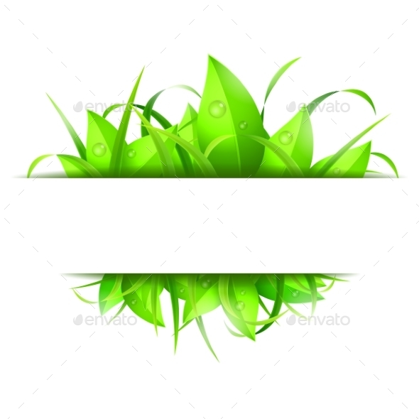Green Grass and Leaves Banner - Flowers & Plants Nature