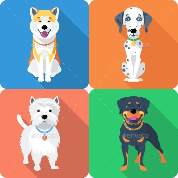 Dog Akita Inu,  Dalmatian, Rottweiler and West  - Animals Characters