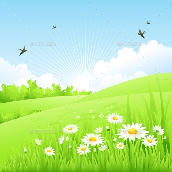 Spring Background  - Landscapes Nature