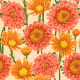 Floral Seamless Patterns  - GraphicRiver Item for Sale