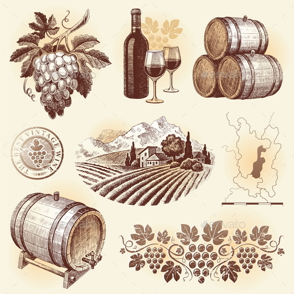 Wine and Winemaking Hand Drawn Set - Food Objects