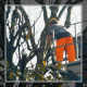 Gardener on a Crane Cutting Tree Branches - VideoHive Item for Sale