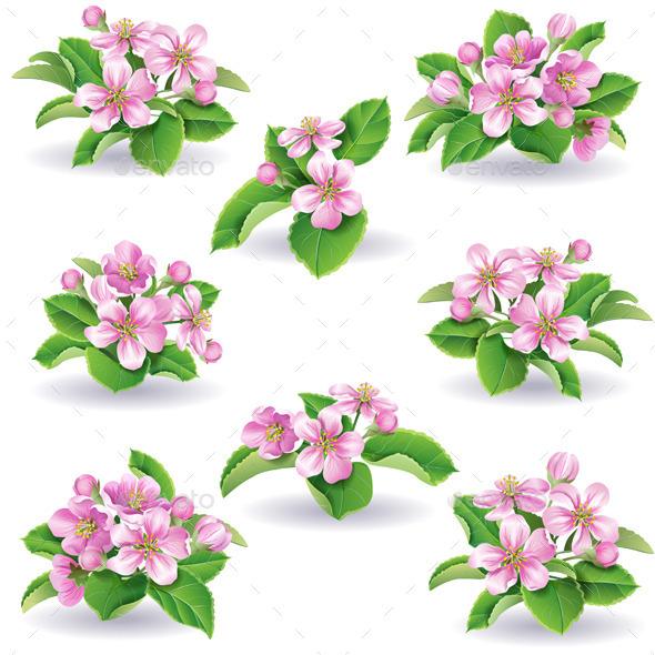 Floral Set - Flowers & Plants Nature