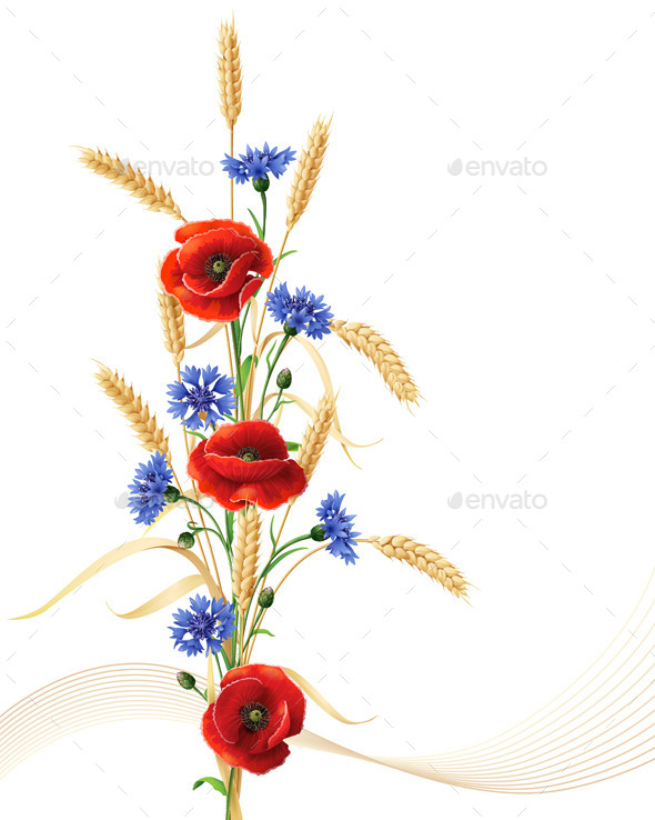 Cornflowers with Poppy Flowers and Wheat - Flowers & Plants Nature