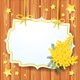 Background with Mimosa and Label - GraphicRiver Item for Sale