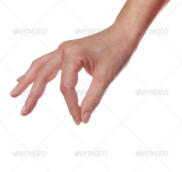 Human palm - Stock Photo - Images