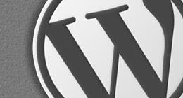 Super WordPress Themes
